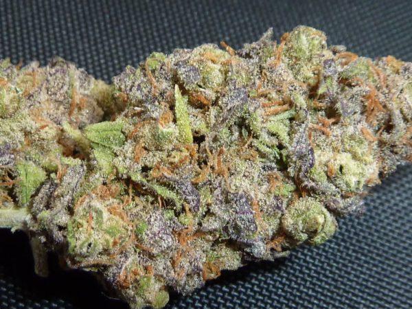 Bash cannabis bud