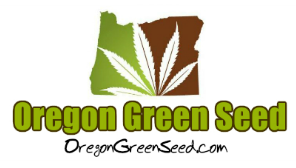 Oregon Green Seed - a breeder-direct Pacific Northwest Cannabis seed company.
