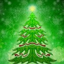beautiful-green-christmas-tree