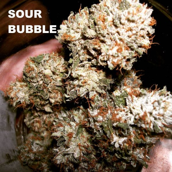 sour bubble