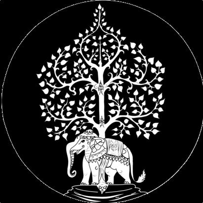 tree of life high cbd series