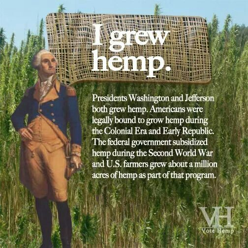 george washington grew hemp